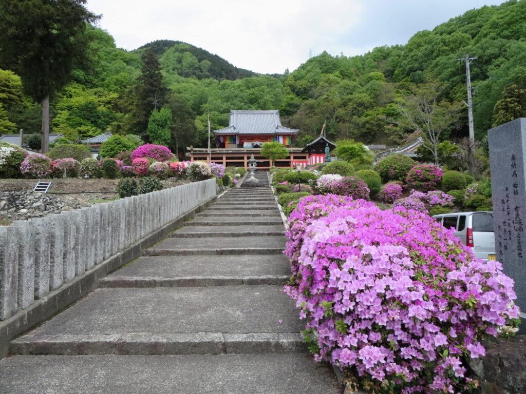 安楽寺(さつき寺)