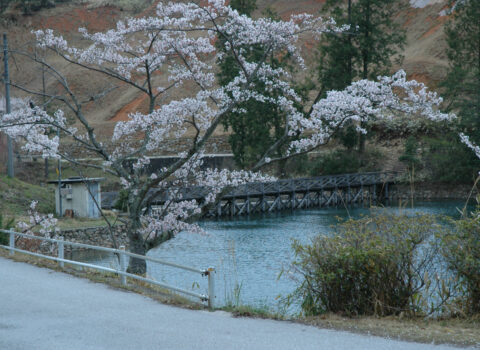 七ツ池自然公園