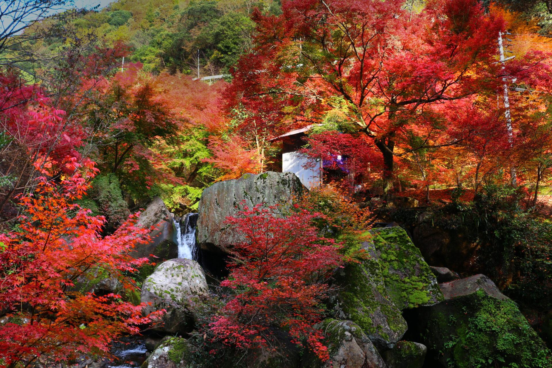 三郎の滝紅葉まつり